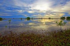 博内尔岛湖 免版税图库摄影