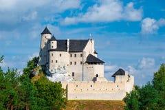 博博利采,波兰- 2017年8月13日:在小山的博博利采城堡在一个晴天 免版税库存图片