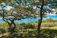 博塔福戈海滩Upview与有些小船的 免版税库存照片