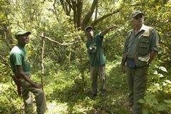 博士 Karmari、工作在诱捕的阵营的兽医和小组发现圈套夺取动物在察沃国家公园在肯尼亚, Af 免版税库存图片