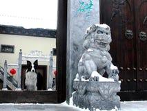 博德牧羊犬在中国镇 免版税图库摄影