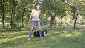 博德牧羊犬在公园显示旋转在女孩经理的腿的附近一个把戏每晴天,慢动作射击 股票录像