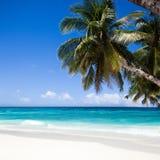 博拉凯海岛 使白色靠岸 库存图片