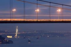 博斯普鲁斯海峡伊斯坦布尔火鸡 免版税库存图片
