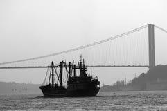 博斯普鲁斯海峡伊斯坦布尔火鸡 图库摄影