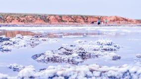 博格多山 俄国 Baskunchak 盐湖 免版税库存照片