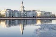 博物馆内阁求知欲在圣彼得堡和Reflectio 免版税库存照片