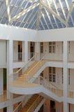 博物馆台阶 免版税图库摄影