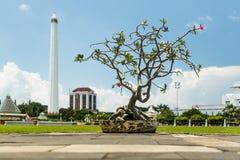 博物馆Tugu Pahlawan在苏拉巴亚,东爪哇省,印度尼西亚 库存照片