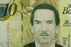 10博茨瓦纳普拉钞票细节  免版税图库摄影