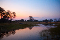 博茨瓦纳河日落 库存照片