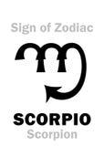 占星术:黄道带天蝎座的标志蝎子 免版税库存照片