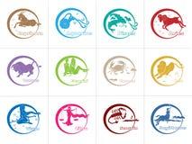 12占星的标志 库存照片