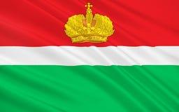 卡卢加州,俄罗斯联邦旗子  向量例证