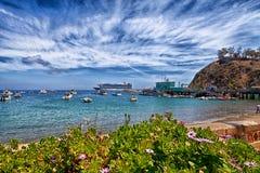 卡塔利娜海岛港口 库存图片
