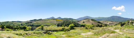 卡塔龙尼亚的农村风景 免版税库存照片