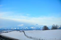 卡尔加里冬天 免版税库存照片