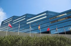 卡尔加里市政厅 免版税库存照片