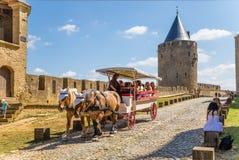 卡尔卡松,法国 有游人的马支架中世纪堡垒的背景的 联合国科教文组织名单 免版税库存图片