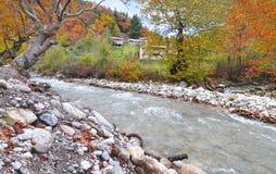 卡尔季察森林秋天风景有河的色萨利希腊 图库摄影