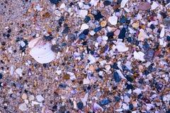 从卡尔斯巴德海滩的海滩岩石 免版税图库摄影
