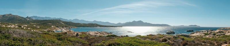 卡尔维海湾全景在可西嘉岛 免版税库存图片