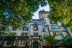 卡尔霍恩学院,在耶鲁大学校园里,在纽黑文, 免版税库存照片