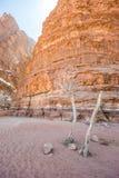 卡扎利峡谷嘴在瓦地伦(约旦) 免版税图库摄影