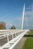 卡拉特拉瓦桥梁竖琴,荷兰 免版税图库摄影