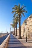 卡斯卡伊斯沿海城市的城堡  免版税库存图片
