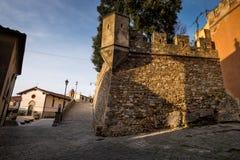 卡斯塔涅托卡尔杜奇,来克亨鸡,意大利- Gherardesca城堡 免版税图库摄影