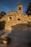卡斯塔涅托卡尔杜奇,来克亨鸡,意大利- Gherardesca城堡 库存照片