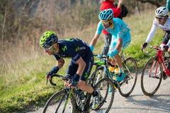 卡斯泰尔拉伊蒙多,意大利- 2015年3月15日:专业骑自行车者 免版税库存图片