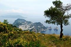 卡普里岛看法  库存图片