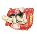 卡片可爱的猫在枕头睡觉 免版税图库摄影