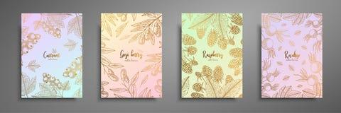 卡片设计的金五颜六色的收藏用莓果 葡萄酒与莓果例证的金框架-无核小葡萄干, goji 免版税库存照片