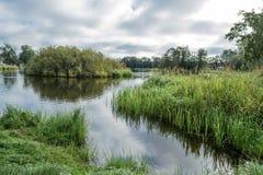 卡累利阿人的湖在早上、河道、草和树 免版税图库摄影