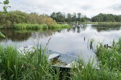 卡累利阿人的湖在早上、草、树和一条偏僻的小船 免版税库存照片
