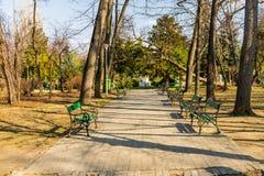 卡罗尔公园在布加勒斯特,罗马尼亚 空的胡同 免版税库存照片