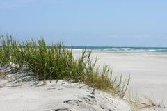 卡罗来纳州沙丘北部沙子 免版税库存图片