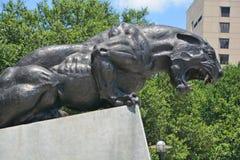卡罗来纳州豹的古铜色雕象 库存照片
