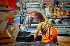 卡莫利,利古里亚,意大利- 2015年与抓住的6月15日Fishermans 免版税库存照片