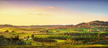 卡萨莱马里蒂莫村庄、葡萄园和风景在Maremma Tu 免版税库存照片