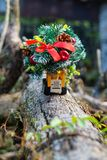 卡车和圣诞树的运输缩样  节假日概念 库存照片