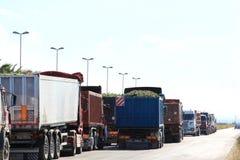 卡车用葡萄, Zapponeta,意大利填装了 免版税库存照片
