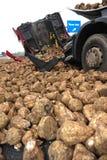 卡车由垂直的白萝卜毁坏 库存照片