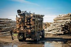 卡车运载的木头 免版税图库摄影