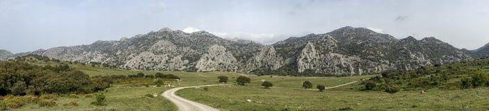 卡迪士,安大路西亚,西班牙省的格拉萨莱马自然公园  库存图片
