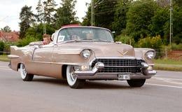 卡迪拉克黄金国敞篷车1955年 免版税图库摄影