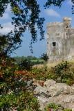 卡鲁中世纪城堡 免版税库存照片
